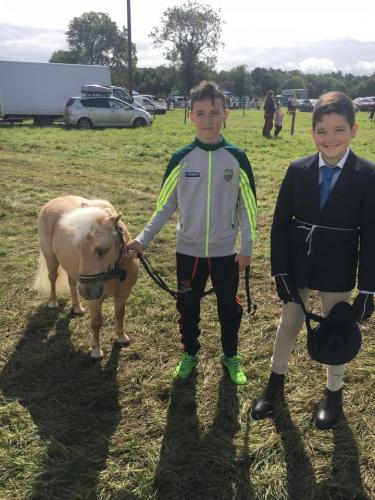 2017 Roscommon Agricultural Show
